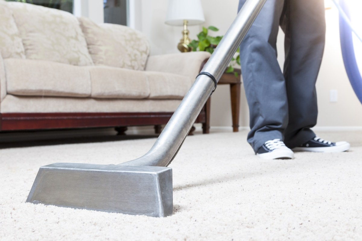 steamaid carpet cleaning