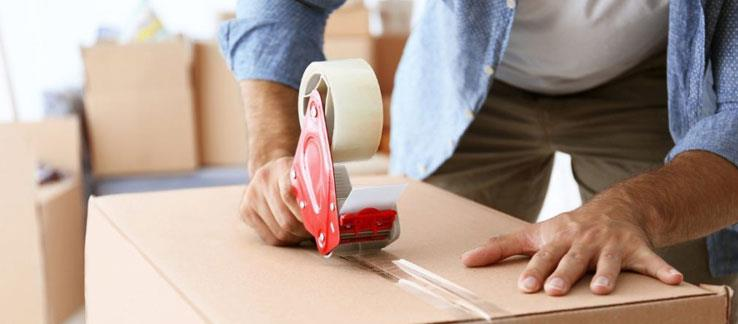 Packers and movers in Jaipur