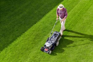 Power Options of Mowers