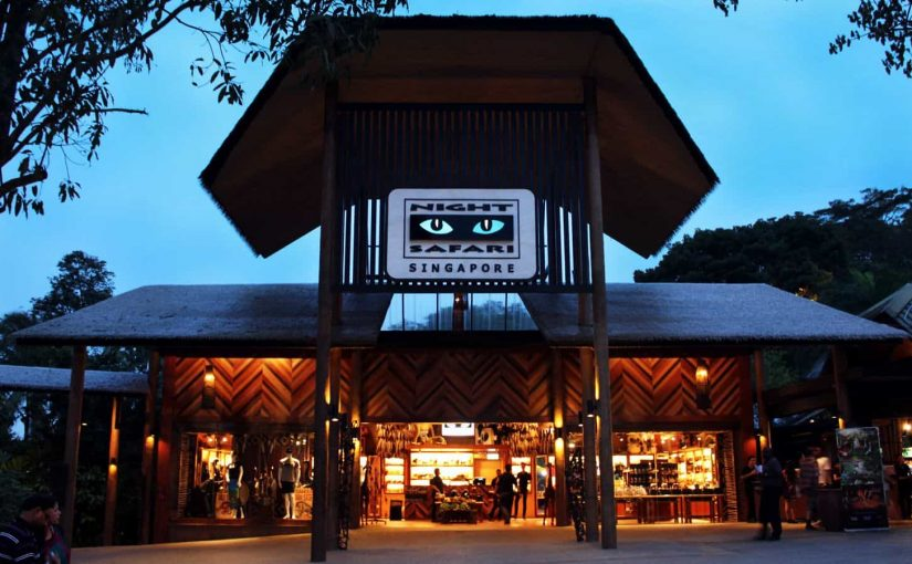 enjoy singapore night safari in singapore bali package