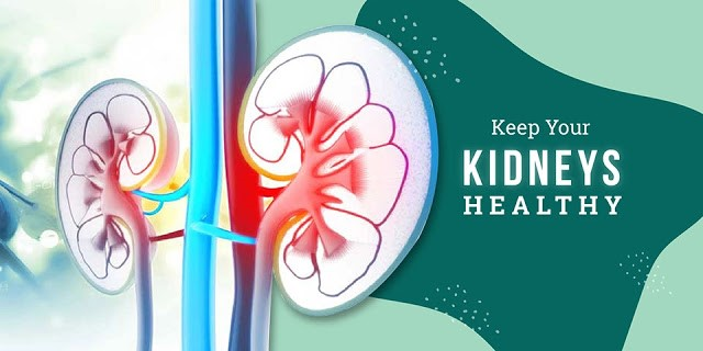 Diet Tips To Keep Your Kidneys Healthy